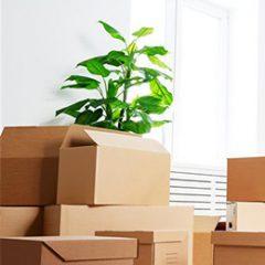 Economique, PerpiDem vous propose une déménagement professionnel avec plus de 20 ans d'expérience